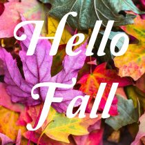 Goodbye Summer – Hello Fall!