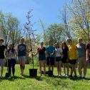 Pictures of students planting apple trees